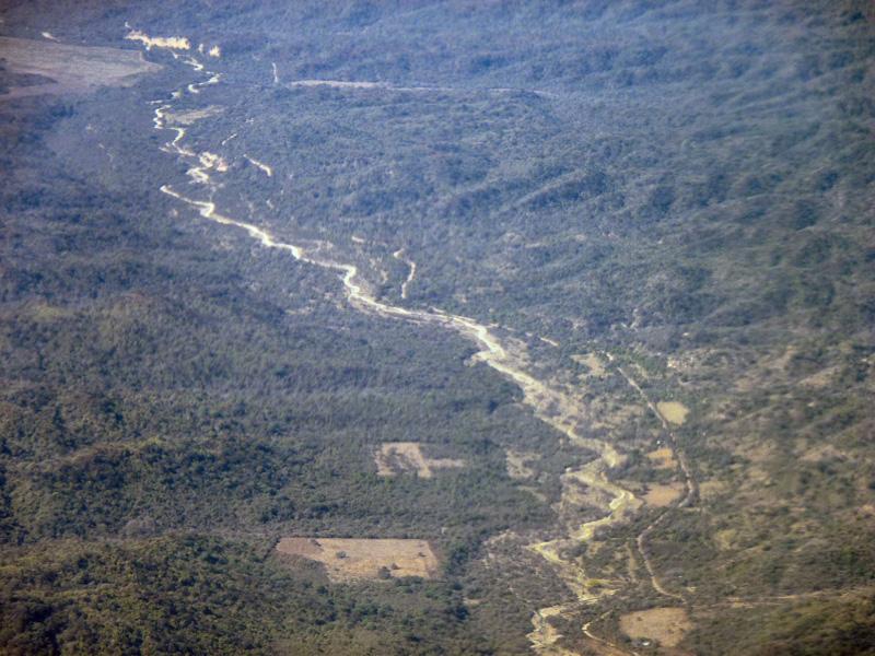 Forêts du Brésil et/ou du Paraguay