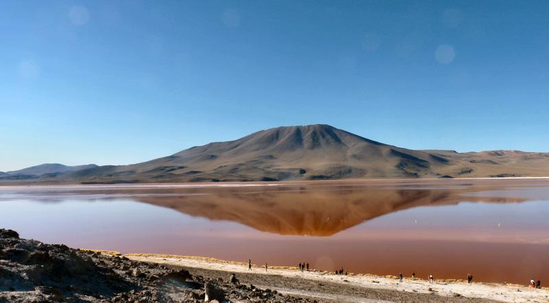 P1280256 obl Parmi les joyaux de l'Altiplano andin, la Laguna Colorada. La couleur lie-de-vin s'explique par l'abaondance de bactéries. Les couleurs du lac changent en fonction du froid, du vent et du cadran solaire