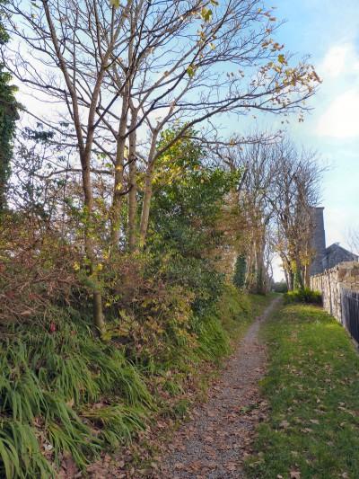 irlande-02-novembre-enr-web-800-039