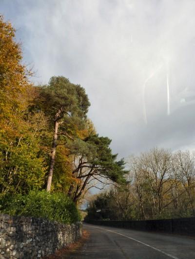 irlande-03-novembre-enr-web-800-029