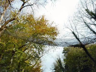 irlande-03-novembre-enr-web-800-031