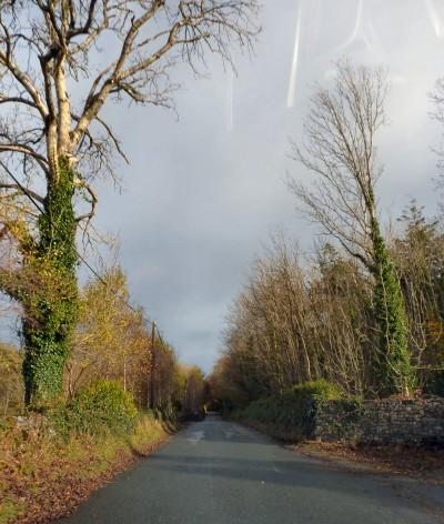 irlande-03-novembre-enr-web-800-038