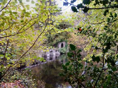 irlande-03-novembre-enr-web-800-064