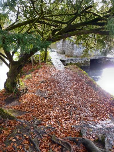 irlande-03-novembre-enr-web-800-069