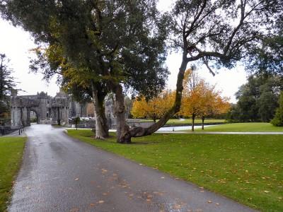 irlande-03-novembre-enr-web-800-088