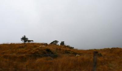 irlande-07-novembre-enr-web-800-021