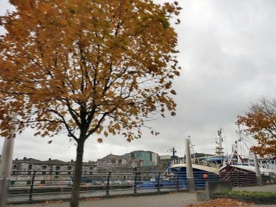 irlande-28-octobre-enr-web-800-P1340231