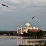 inde-centre-est-17-juillet-agra-enr-web-800-P1110594