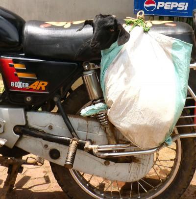 inde-centre-est-21-aout-Chandipur-enr-web-800-P1240889_bis