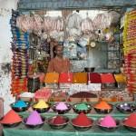 inde-sud-06-07-aout-mysore-enr-web-800-P1060258