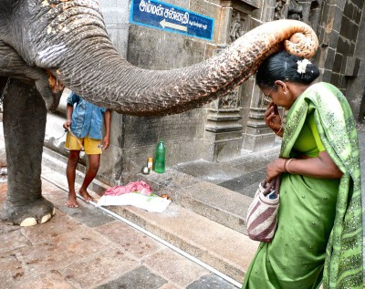 inde-sud-15-16-17-juillet-pondichery-tanjore-enr-web-800-P1010389