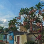 cuba-20-avril-trinidad-P1590853-enr-web-800