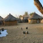 namibie-15-juillet-Halali- Namutoni-Oshakati-Ruacana-P1640310-enr-web-800