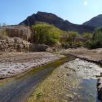 namibie-19-juillet-Sesfontein-P1650203-enr-web-800